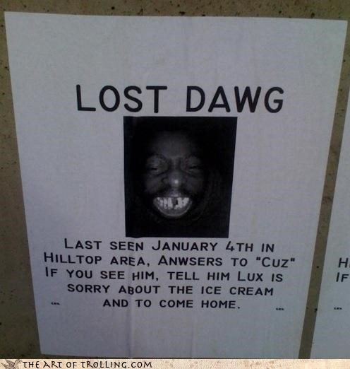 come home bro dawg dogs ice cream IRL lost - 4519232512