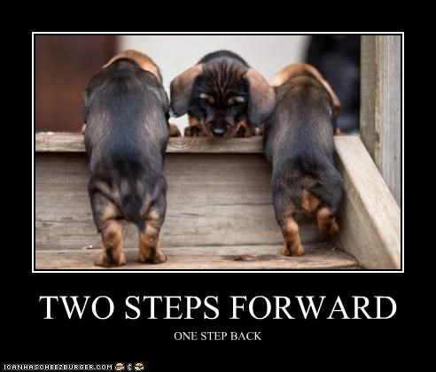 TWO STEPS FORWARD ONE STEP BACK