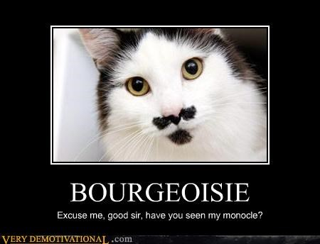 bourgeoisie,cat,mustache,monocle