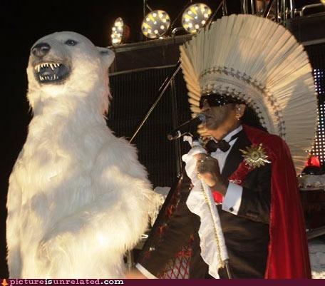 mic performance polar bear wtf