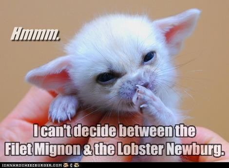 Hmmm. I can't decide between the Filet Mignon & the Lobster Newburg.