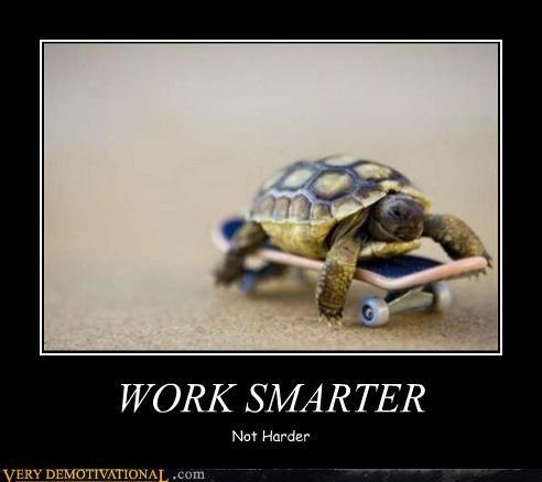 turtle skateboard good idea - 4520625920