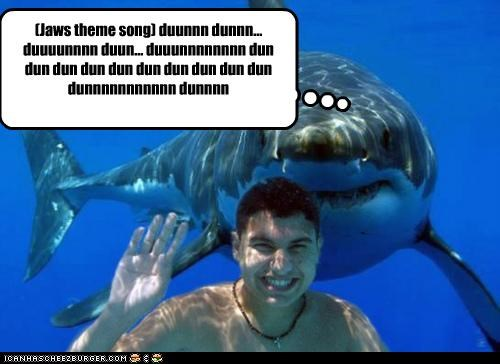 Jaws theme song) duunnn dunnn    duuuunnnn duun