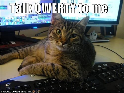 caption captioned cat dirty flirting Hall of Fame keyboard pun qwerty rhyme - 4521006336
