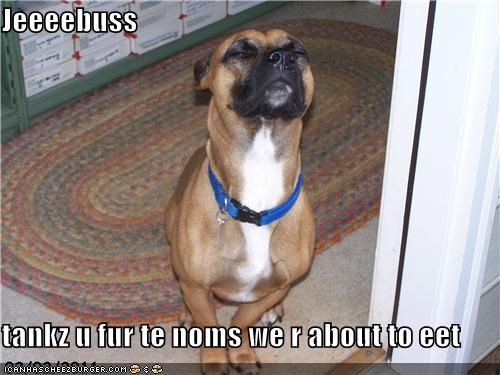 Cheezburger Image 4522254080