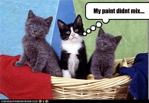 caption captioned cat Cats color colors did not kitten mix paint - 4522809856