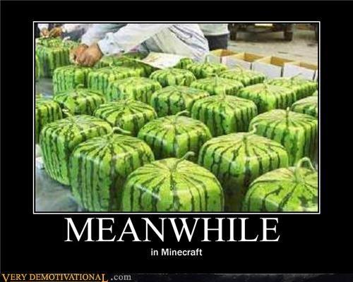 fruit minecraft Square watermelon