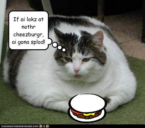 Cheezburger Image 4525297664