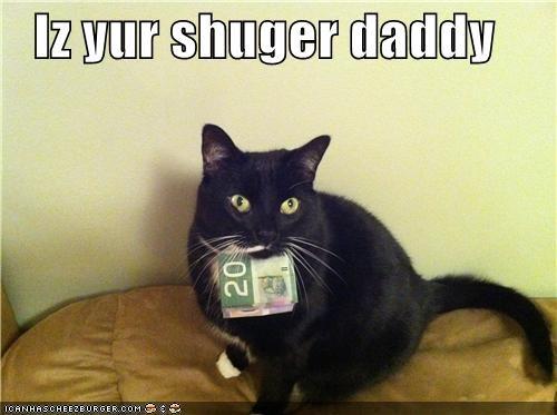 Cheezburger Image 4525664000