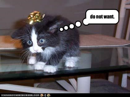Cheezburger Image 4525753344
