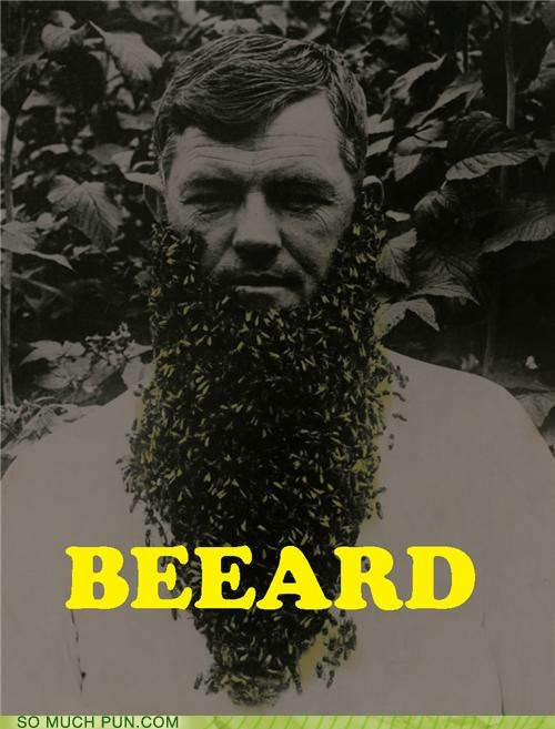 beard bee bees facial hair literalism spelling syllable wtf