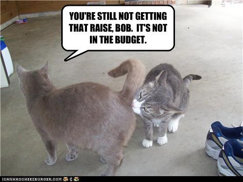 brown nosing budget butt caption captioned cat Cats corporate denied getting Hall of Fame literalism money not raise request sniffing - 4527085312