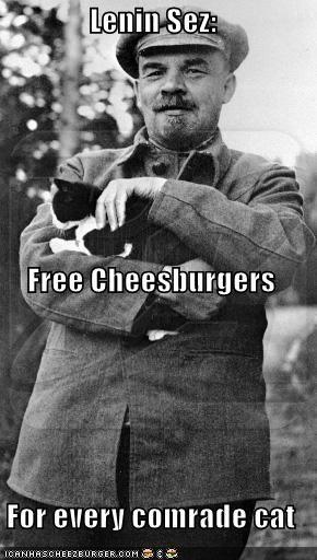 Cheezburger Image 4527716096