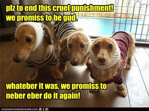 plz to end this cruel punishment! we promiss to be gud. whateber it was, we promiss to neber eber do it again!