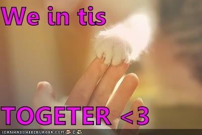 Cheezburger Image 4528489728