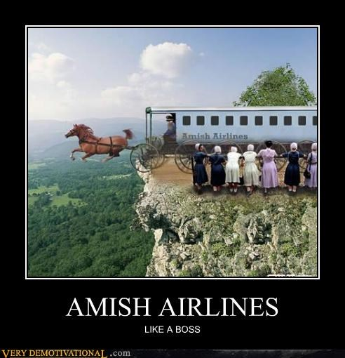 airlines amish awesome bad azz horses