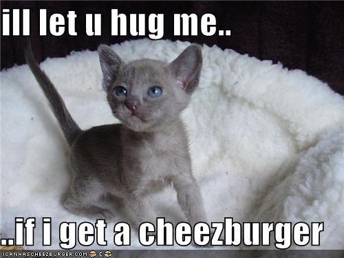 Cheezburger Image 4528734208