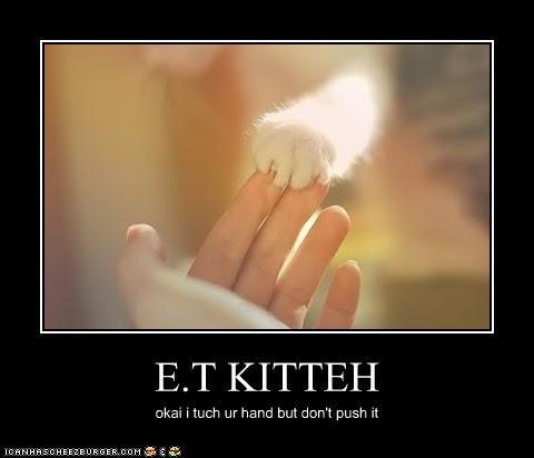 E.T KITTEH okai i tuch ur hand but don't push it