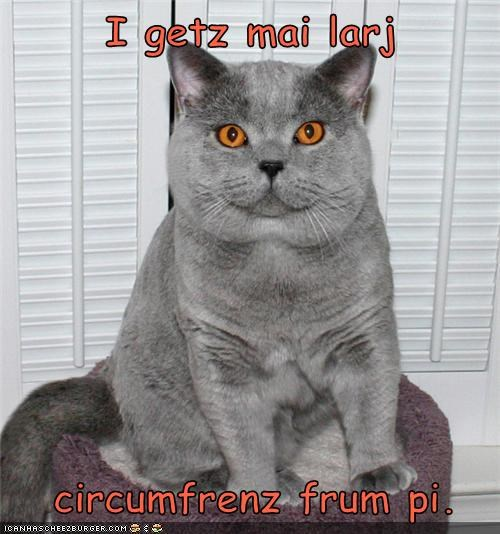 caption captioned cat circumference double meaning explanation fat Hall of Fame homophone large pi pie pun - 4528796160