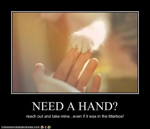 NEED A HAND? reach out and take mine...even if it was in the litterbox!