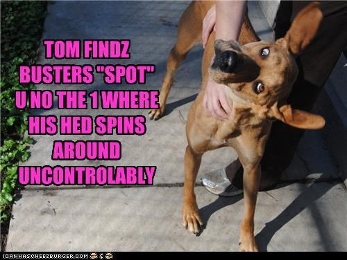 "TOM FINDZ BUSTERS ""SPOT"" U NO THE 1 WHERE HIS HED SPINS AROUND UNCONTROLABLY"