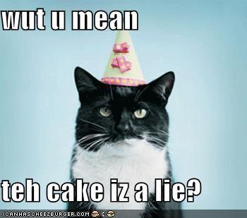 wut u mean  teh cake iz a lie?