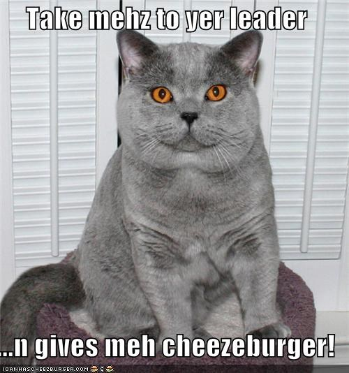 Cheezburger Image 4530201344
