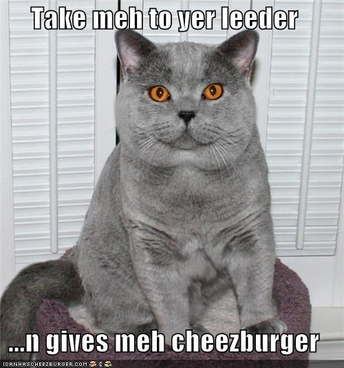 Cheezburger Image 4530215168
