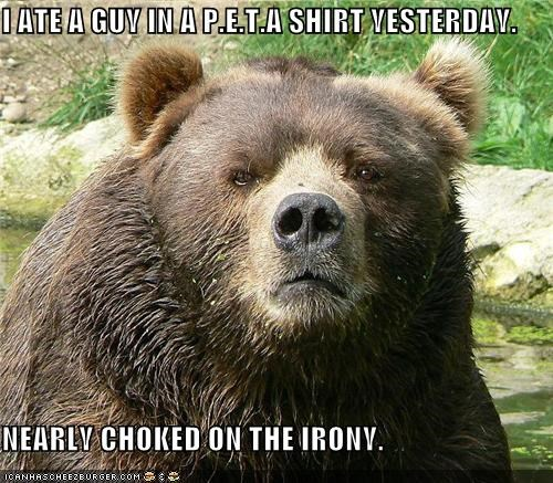 ate,bear,best of the week,caption,captioned,choked,guy,I Can Has Cheezburger,irony,nearly,p-e-t-a,peta,recalling,shirt,story