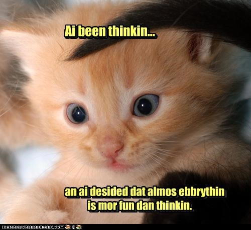 caption captioned cat decided decision everything fun kitten more preferable preference tabby thinking - 4531086592