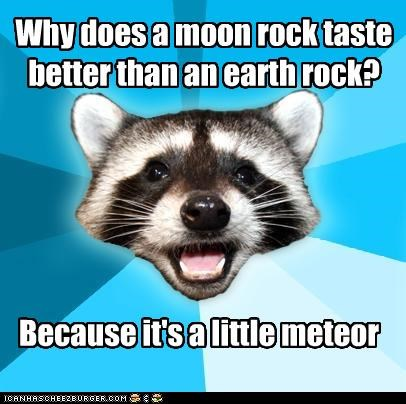 Lame Pun Coon,meteor,moon rock,puns
