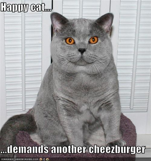 Cheezburger Image 4531709184