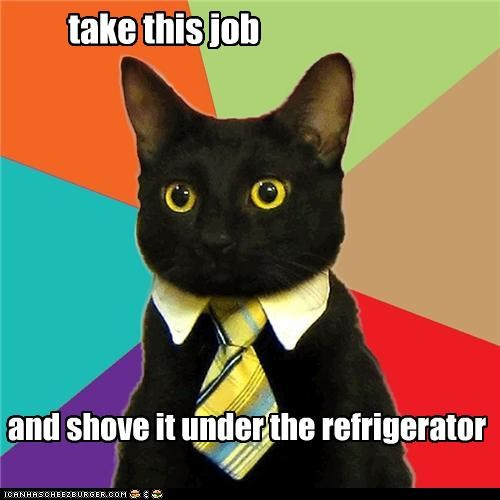 Business Cat,take this job and shove it,under the fridge