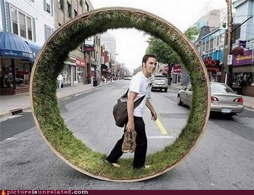 art,grass,hamster wheel,hipsters,wtf