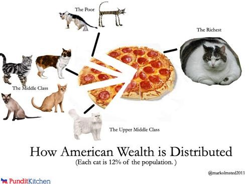 Cats Chart diagram Economics lolcats money pizza wealth - 4532782336
