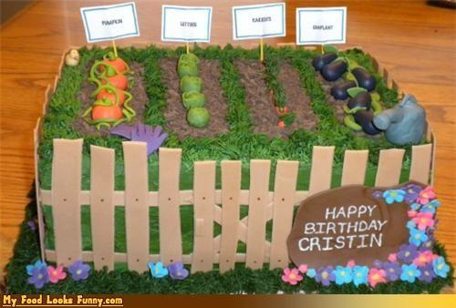 cake crops epicute fence garden plants rows - 4533774080