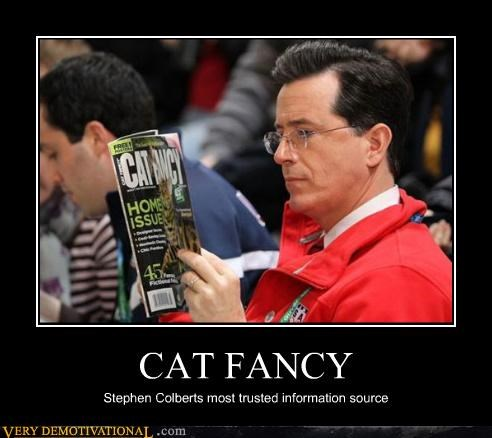 cat fancy,magazine,news,stephen colbert