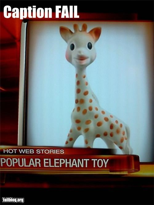 animals,captions,elephants,failboat,giraffes,g rated,identification,news,toys