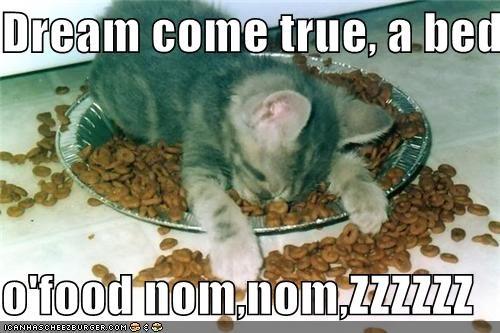 Dream come true, a bed  o'food nom,nom,ZZZZZZ