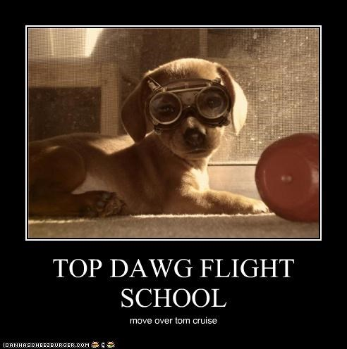 TOP DAWG FLIGHT SCHOOL move over tom cruise