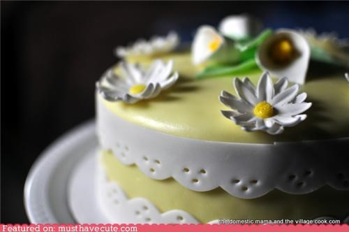 cake daisies epicute flowers fondant lilies spring - 4535400704