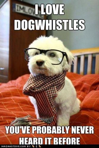 dog whistle,glasses,Hall of Fame,hipster,hipster puppy,meme,memedogs,puppy,scarf,whatbreed,whistle