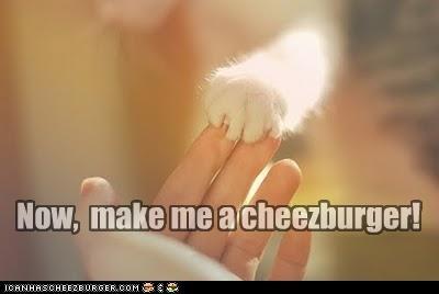 Cheezburger Image 4536274944