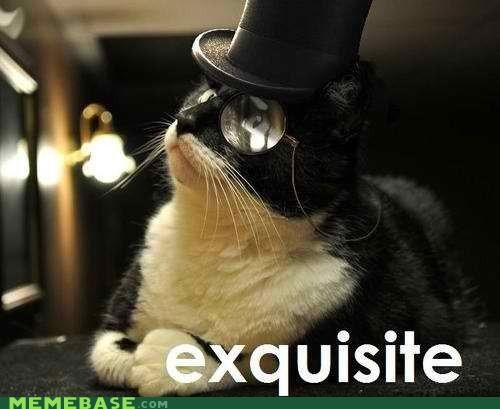 cat monocle top hat - 4536344320