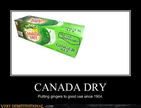 CANADA DRY Putting gingers to good use since 1904.