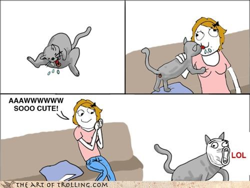 Cats comic lol so cute ugh every single time - 4537099264