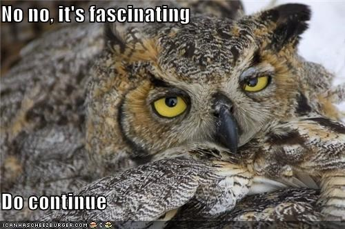 apathetic,caption,captioned,continue,fascinating,lying,Owl,please,story,uninterested