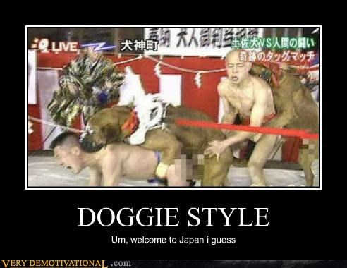 animals doggie style dogs Japan wtf - 4538150144