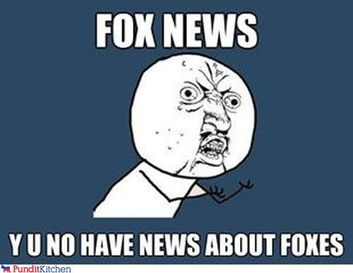fox news,Memes,Y U No Guy