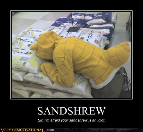 SANDSHREW Sir, I'm afraid your sandshrew is an idiot.